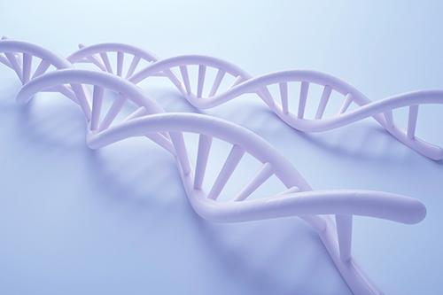孕10周香港无创DNA产前检测有哪些优势